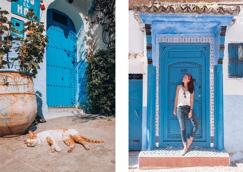 Chefchaouen Blue Door cat women bonjoursunset