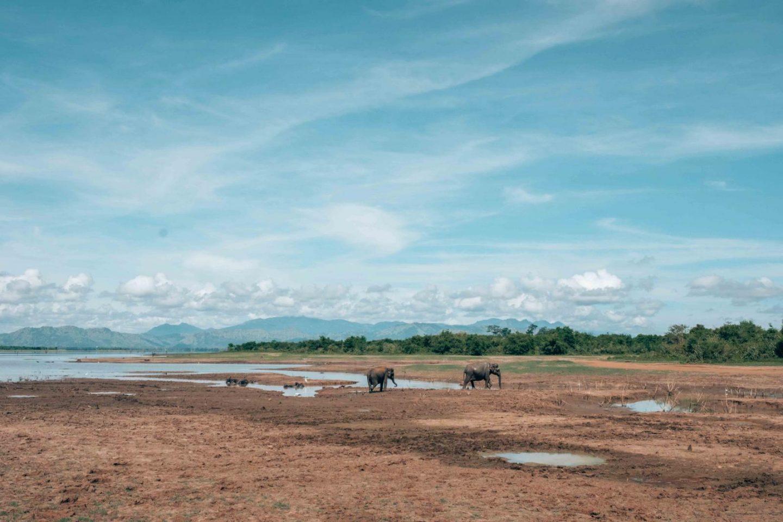 Eco travels Sri Lanka National Park