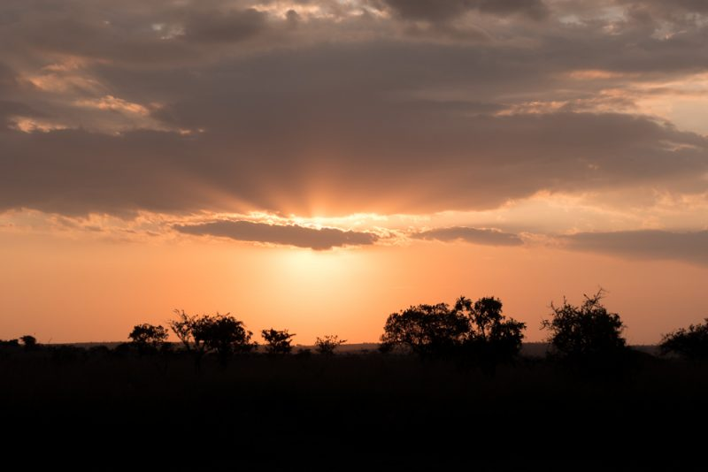 10 DAYS TANZANIA ITINERARY - Sunset
