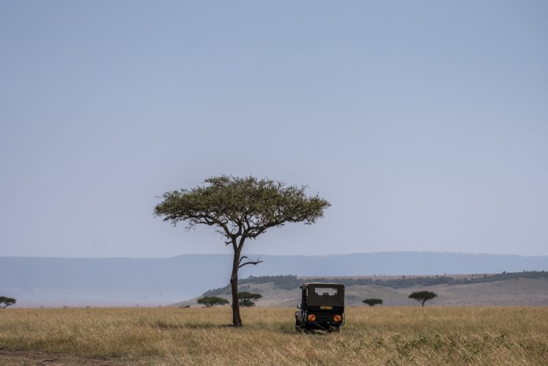 10 DAYS TANZANIA ITINERARY - North Serengeti