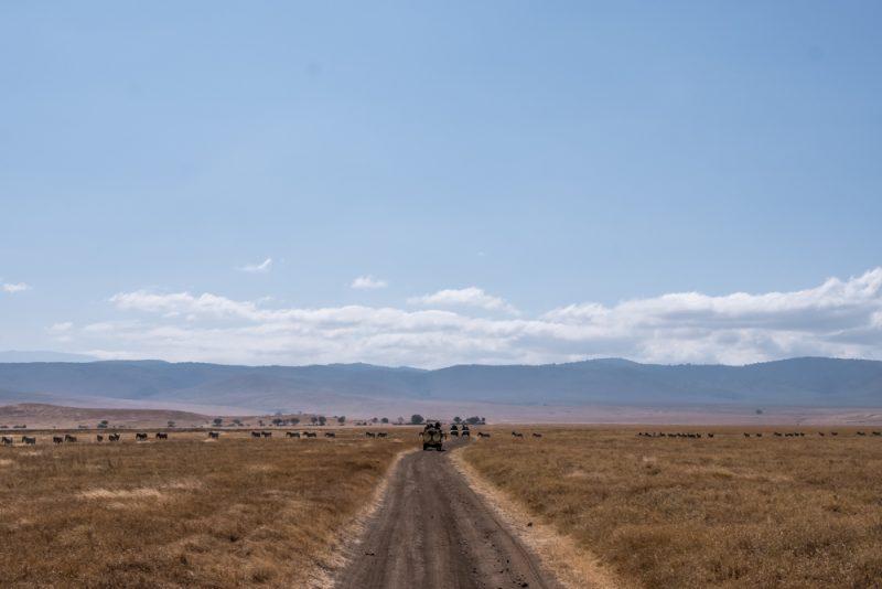 10 DAYS TANZANIA ITINERARY - Ngorongoro Crater