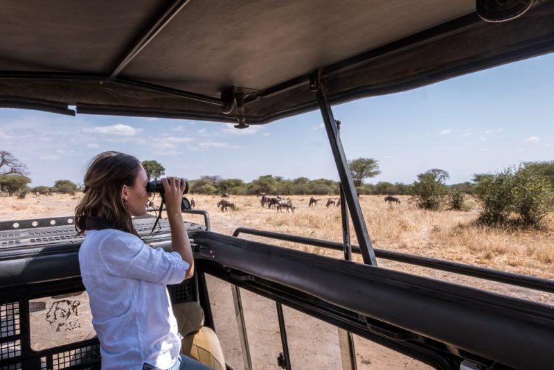 10 DAYS TANZANIA ITINERARY - Tarangire National Park