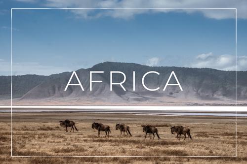 TRAVEL BLOG AFRICA