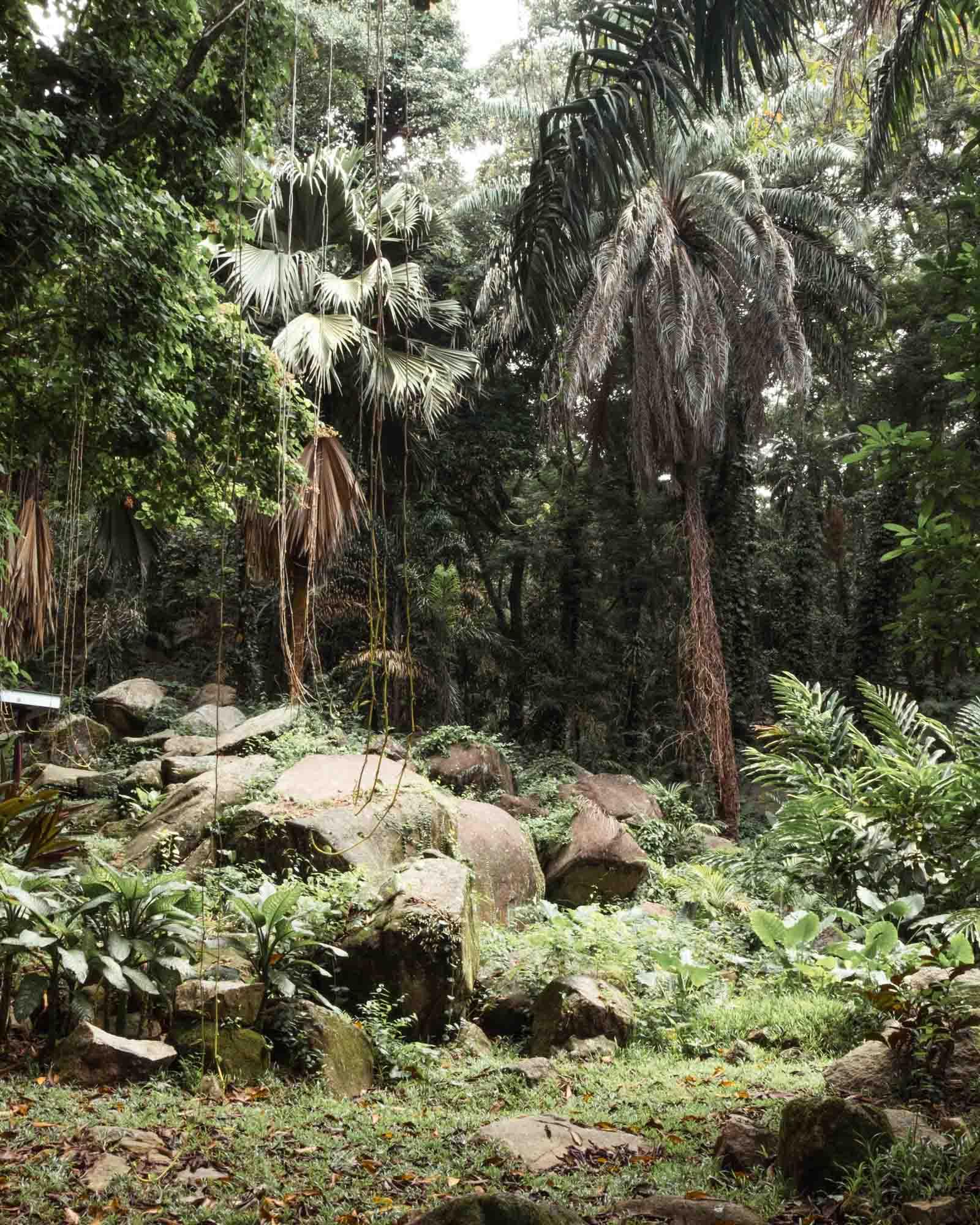 Victoria Botanical Garden