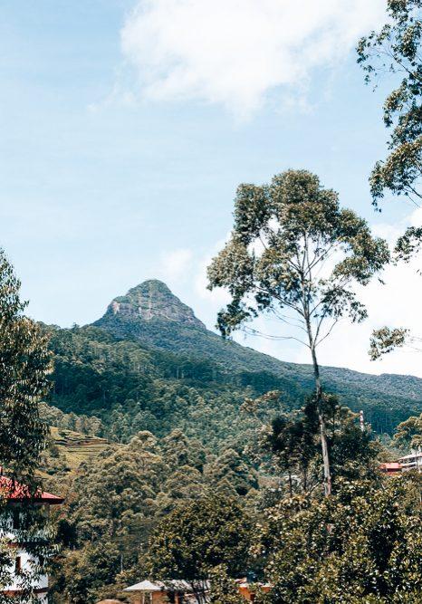 Adam's Peak Mountain View